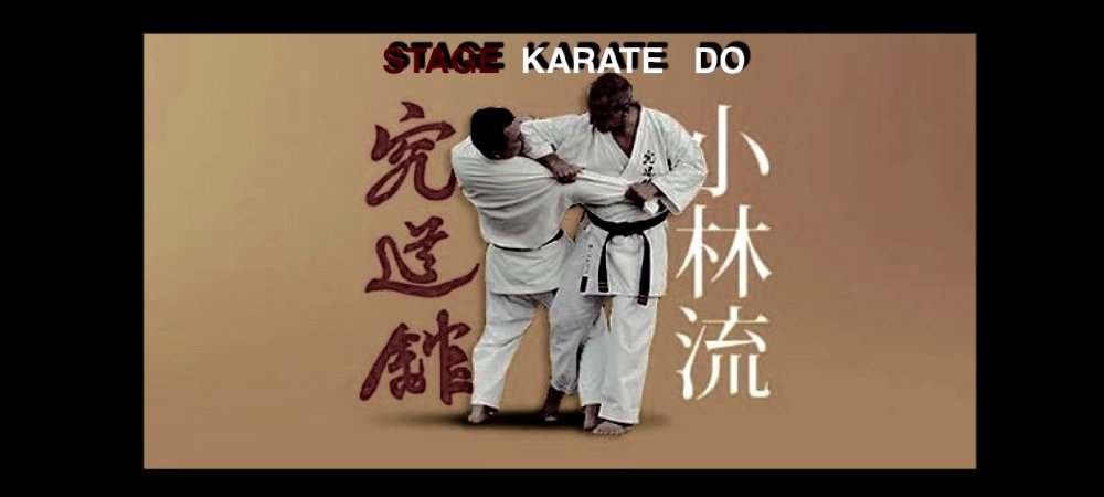 STAGE KARATE DO KYUDOKAN A ARGELES